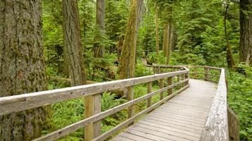 parksville-wildlife-trails-hike